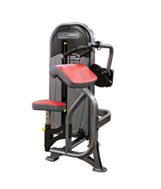 Legend Fitness 1105